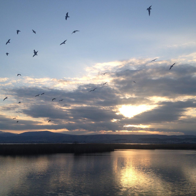 Lac et Ioannina